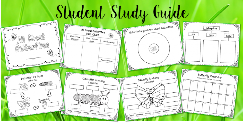 This is such a joyous unit to do with your students! It is packed with great activities that are sure to spark your students imagination and stimulate their minds.